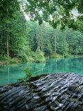 Blausee, Kandersteg, Berner Oberland, Switzerland Photographic Print by Jon Arnold
