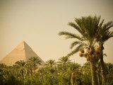 Pyramids at Giza, Cairo, Egypt Fotografisk tryk af Doug Pearson