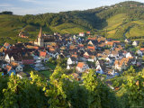Niedermorschwihr, Alsace, France Photographic Print by Peter Adams