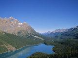 Peyto Lake, Banff Np, Alberta, Canada Photographic Print by Danielle Gali