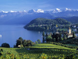 Spiez, Lake Thun, Berner Oberland, Switzerland Photographic Print by Peter Adams