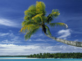 Beach at North Aitutaki Island, Cook Islands Photographic Print by Peter Adams