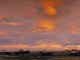Punta Arenas, Magellanes, Chile Photographic Print by Walter Bibikow