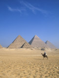 Giza Pyramids, Cairo, Egypt Photographic Print by Jon Arnold