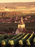 Ville-Dommange, Champagne, France Photographic Print by Doug Pearson
