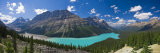 Peyto Lake, Icefields Parkway, Alberta, Canada Photographic Print by Michele Falzone