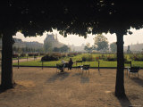 Jardin Des Tuileries, Paris, France Photographic Print by Jon Arnold