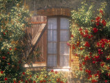 Window, Apt, Provence, France Photographic Print by Walter Bibikow