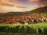 Riquewihr, Alsace, France Photographic Print by Doug Pearson