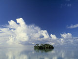 Tropical Island, Raratonga, Cook Islands Photographic Print by Peter Adams