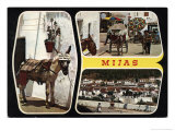 Mijas Postcard with Donkey Poster