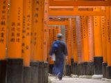 Torii Gates, Fushimi Inari Taisha Shrine, Kyoto, Honshu, Japan Photographic Print by Peter Adams