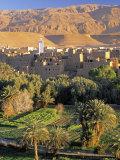 Tinerhir, Morocco Fotodruck von Peter Adams