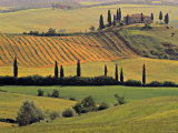Val d'Orcia, Tuscany, Italy Photographic Print by Walter Bibikow