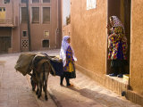 Woman and Her Donkey, Abyaneh Near Kashan, Isfahan Province, Iran Photographic Print by Michele Falzone