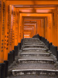 Torii Gates, Fushimi Inari Taisha Shrine, Kyoto, Honshu, Japan Photographie par Gavin Hellier