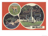 1980's Burley Postcard Posters