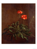 Study of Poppies Giclee Print by John Constable