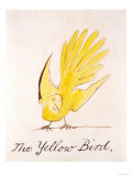 Yellow Bird Giclee Print by Edward Lear