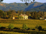 Estate and Vineyard, Napa Valley, California Photographic Print by John Alves