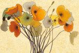 Shirley Novak - Pumpkin Poppies I - Reprodüksiyon