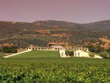 Opus One Winery, Napa Valley, California Photographic Print by John Alves
