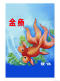 Fancy Bubble Eye Goldfish Posters