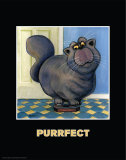 Purrfect Prints by  Kourosh
