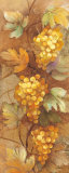 Autumn Grapes I Art by Albena Hristova
