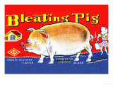 Bleating Pig Art