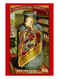 Dr. Kilmer's Standard Herbal Remedies Premium Giclee Print