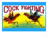 Cock Fighting Posters