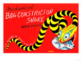 Boa Constrictor Snake with Victim Prints