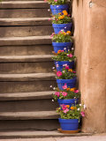 Staircase Decorated with Flower Pots, Santa Fe, New Mexico Photographic Print by Nancy & Steve Ross