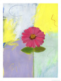 Pink Zinnia Giclee Print by Peggy Brown