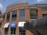 Durham Bulls Athletic Park, Durham, North Carolina Photographic Print by Lynn Seldon
