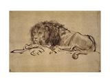 Lion Resting, Turned to the Left Giclée-tryk af  Rembrandt van Rijn