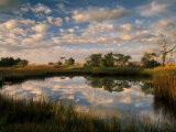 Chimney Creek Reflections, Tybee Island, Savannah, Georgia Photographic Print by Joanne Wells