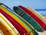 Surfboards For Rent, Waikiki Beach, Oahu, Hawaii Fotografie-Druck von Franklin Viola