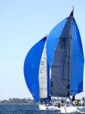 West Florida Ocean Racing Circuit, Pensacola Yacht Club, Pensacola, Florida Fotodruck von Franklin Viola