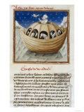 L'Arca di Noè Stampa giclée
