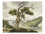 View of the Bay of Avatcha at Kamtchatka Giclee Print by Ludwig Choris