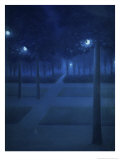 Nocturne Dans Le Parc Royal, Brussels Impression giclée par William Degouve De Nuncques
