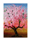 Japanese Cherry Giclee Print by John Newcomb