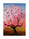 Japanese Cherry Premium Giclee Print by John Newcomb