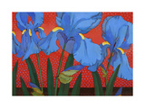 Irises and Red Giclee Print by John Newcomb