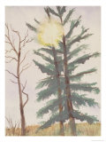 Sunburst Through Tree, c.2006 Giclee Print by Erik Slutsky