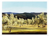 Olive Grove at the Villa Giclée-Druck von Helen J. Vaughn