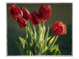 Red Tulips Giclee Print by Helen J. Vaughn
