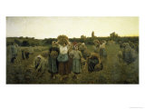 La Rappel Des Glaneursthe Recall of the Gleaners Giclee Print by Jules Breton
